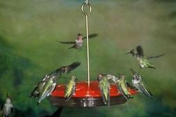 Aspects 16 oz HummZinger Excel Hanging Hummingbird Feeder US