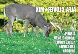alfa clover mix alfalfa clovers chicory deer
