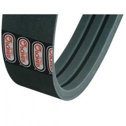 All States Ag Parts Belt - Feeder Jackshaft Drive Case IH 16