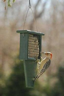 Bird Feeder GREEN Recycled Plastic Suet Birdfeeder !