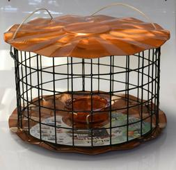 bluebird mealworm feeder w barrier guard copper