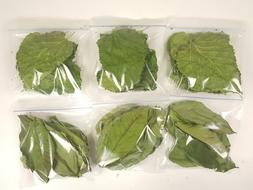 dried guava and mulberry leaves for aquarium