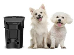 Feed Automatic For Pet Safe Healthy Plug And Play Feeder Dis
