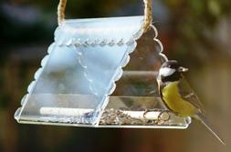 Hanging bird house feeder Clear bird feeders for the outdoor