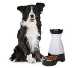 PetSafe Healthy Pet Gravity Dog and Cat Food Station, Stainl