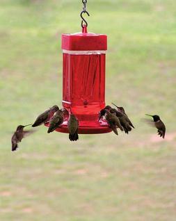 Hummingbird Feeder 32 oz Wide Opening For Outside Patio Gard