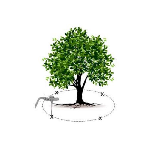 1.5 lb Root Plant Fertilizer Shrub Trees All 36PK