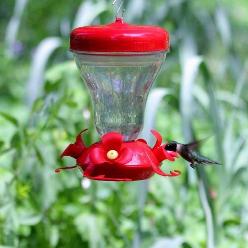 Perky-Pet 120TF Push-Pull Magnolia Plastic Hummingbird