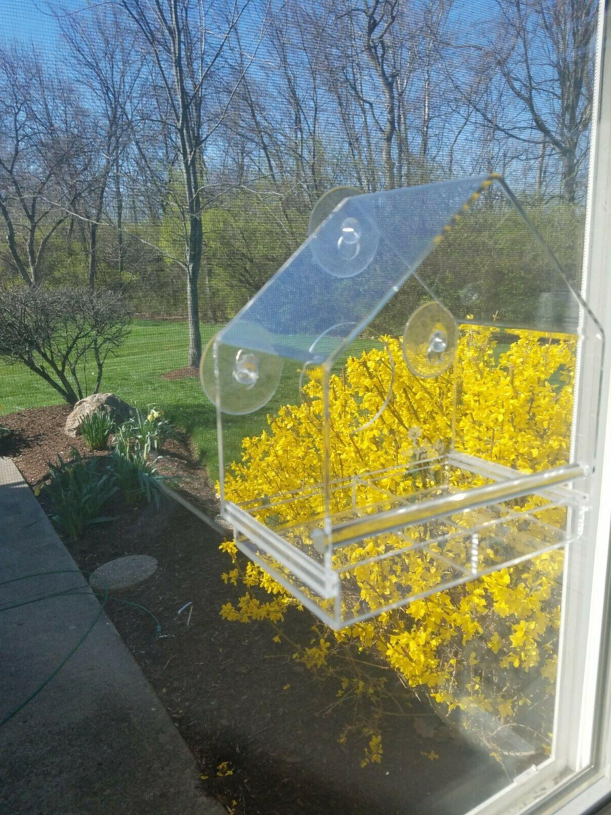 Acrylic Window with Removable Window Viewing Birdfeeder