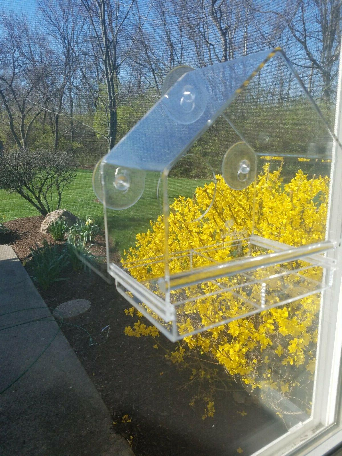 Acrylic Window with Removable Tray Window Viewing Birdfeeder