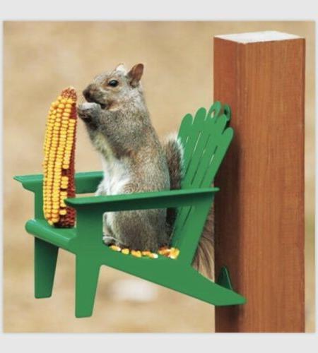 Adirondack Squirrel Feeder Fleur Green