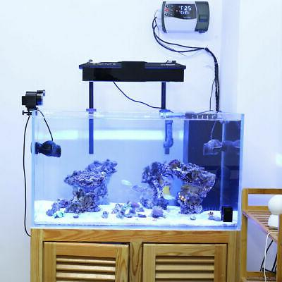Automatic Auto Fish Food Feeding