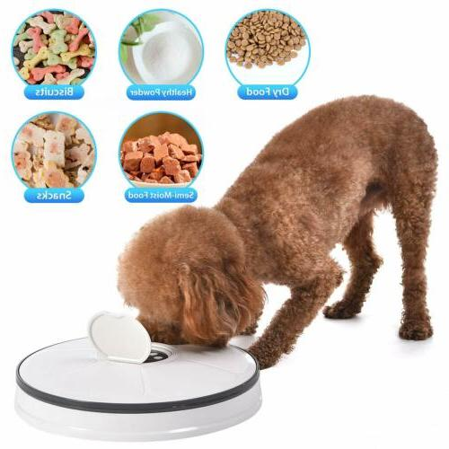 Automatic Dispenser Dogs Cats Animals Self Meal