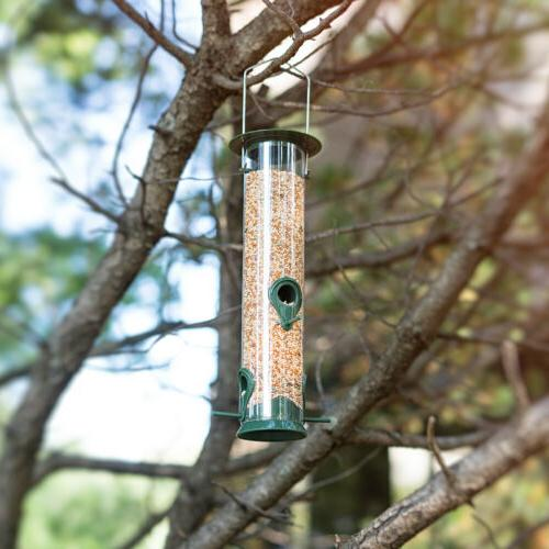 Sorbus Feeder Tube Feeders Finches Seed and More,