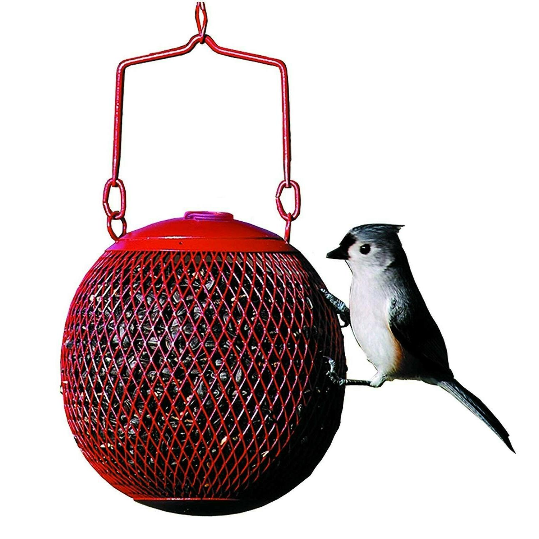 Bird Squirrel Proof Wild Hanging Garden Backyard