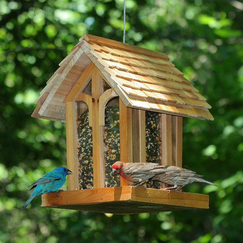 Bird Feeder Squirrel Proof Wild Seed Hanging Garden Outdoor