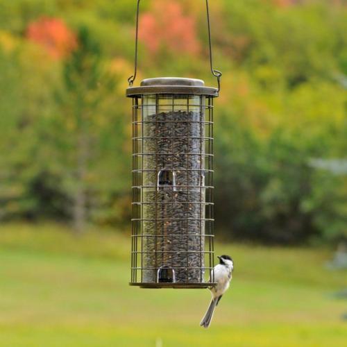 Bird Feeder Wild Holds 8 Ports
