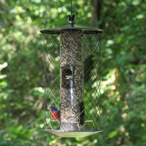 Perky-Pet Preserve Bird Feeder - 735