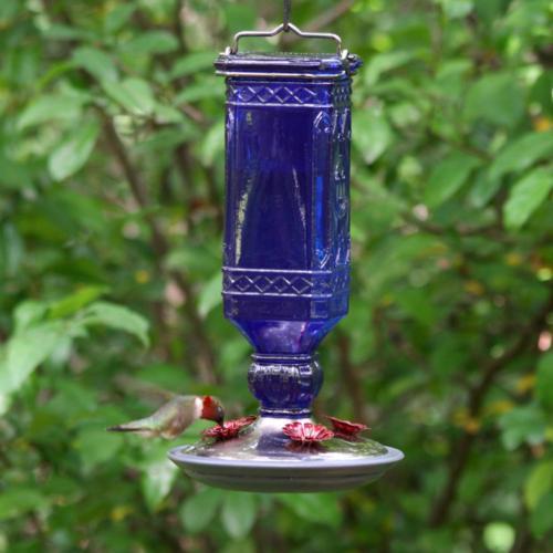Blue Square Glass Hummingbird 16