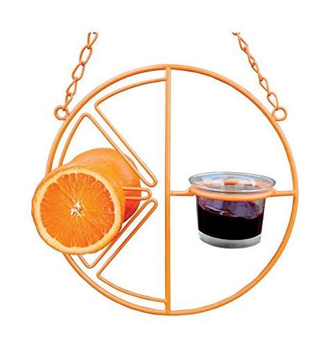 Clementine Feeder Color: Orange.