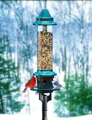 Complete! Brome Squirrel Buster Plus Bird Feeder and Pole Ad