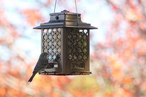 Stokes Select Bird Metal 4 3.6 lb Copper Finish