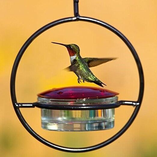 Couronne Hummingbird and Metal