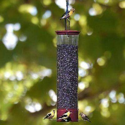 Droll Yankee Dipper 21 Inch 4 Port Squirrel Proof Bird Feede