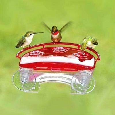 Durable Window Hummingbird