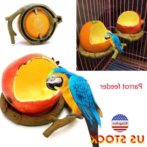 fruit shaped birds feeder pet feeders container