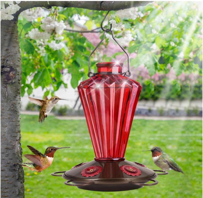BOLITE Glass Hummingbird Feeder