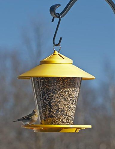 Cherry Valley Feeder Style Feeder, Colors may Vary