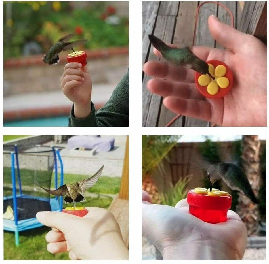 Handheld Hummingbird Perch Plastic Pack 2