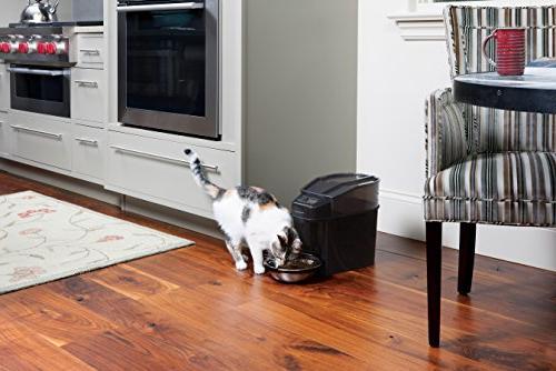 PetSafe Healthy Pet Feed Feeder, Dispenses Dog Food or Cat Clock