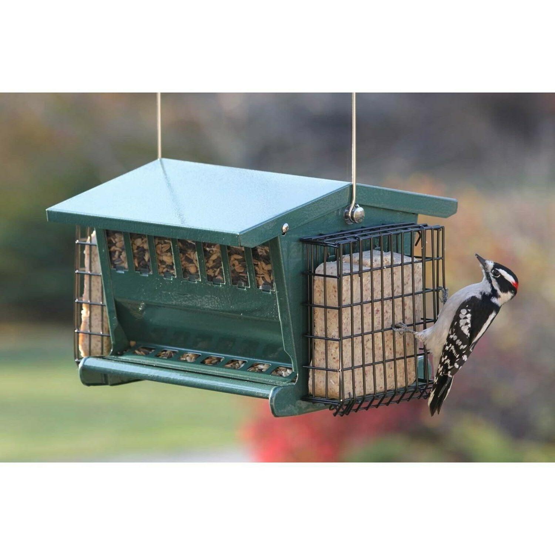 Hopper Bird Yard Suet Garden Outdoor Proof