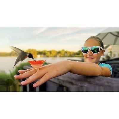hummer rings hummingbird feeder you