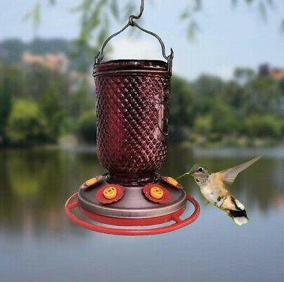 Hummingbird Feeder w/Bee Mason Jar Plated Base 32