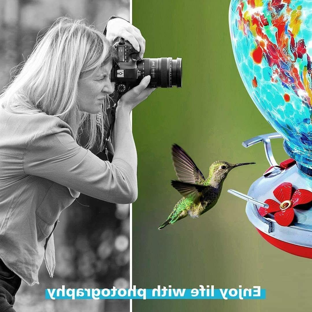 Hummingbird for Glass Bird Feeders to