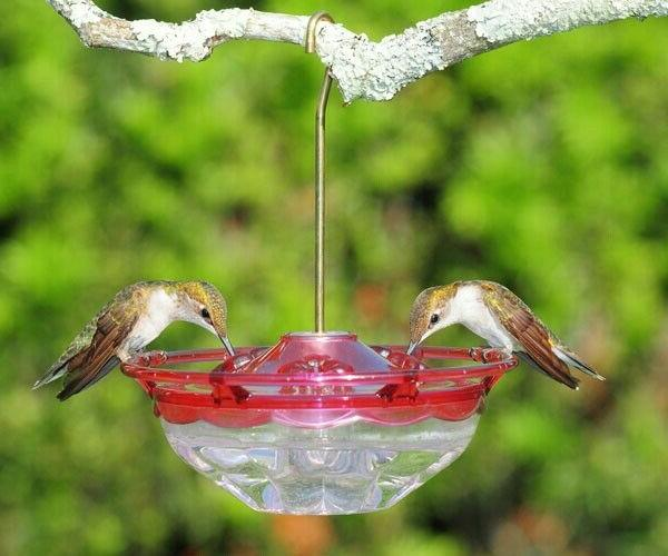 Hummingbird Feeder - HummZinger Excel 16oz Hanging  - MADE I