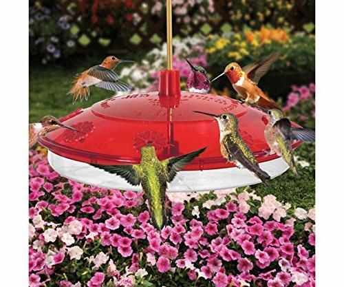hummingbird feeder leak proof uv