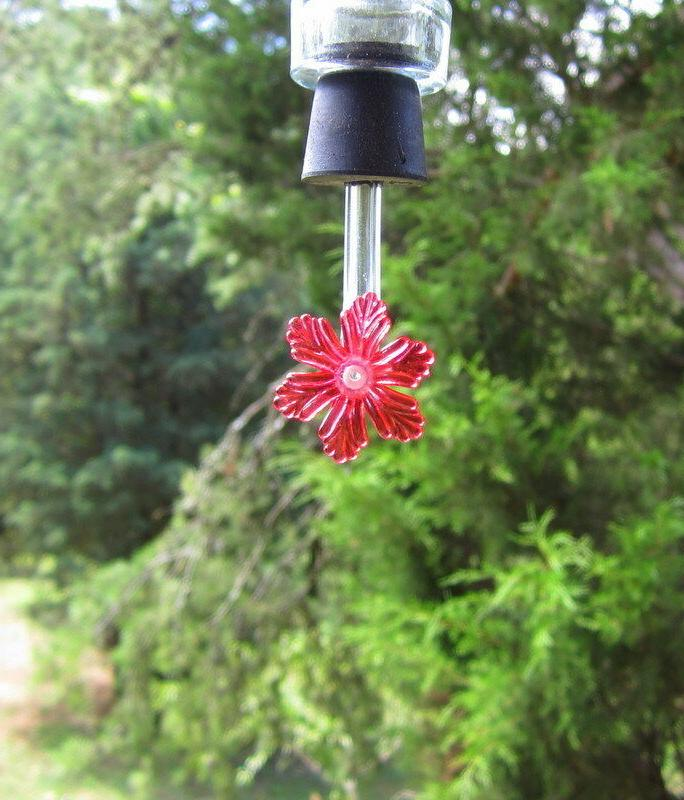hummingbird feeder tubes and stoppers with flower