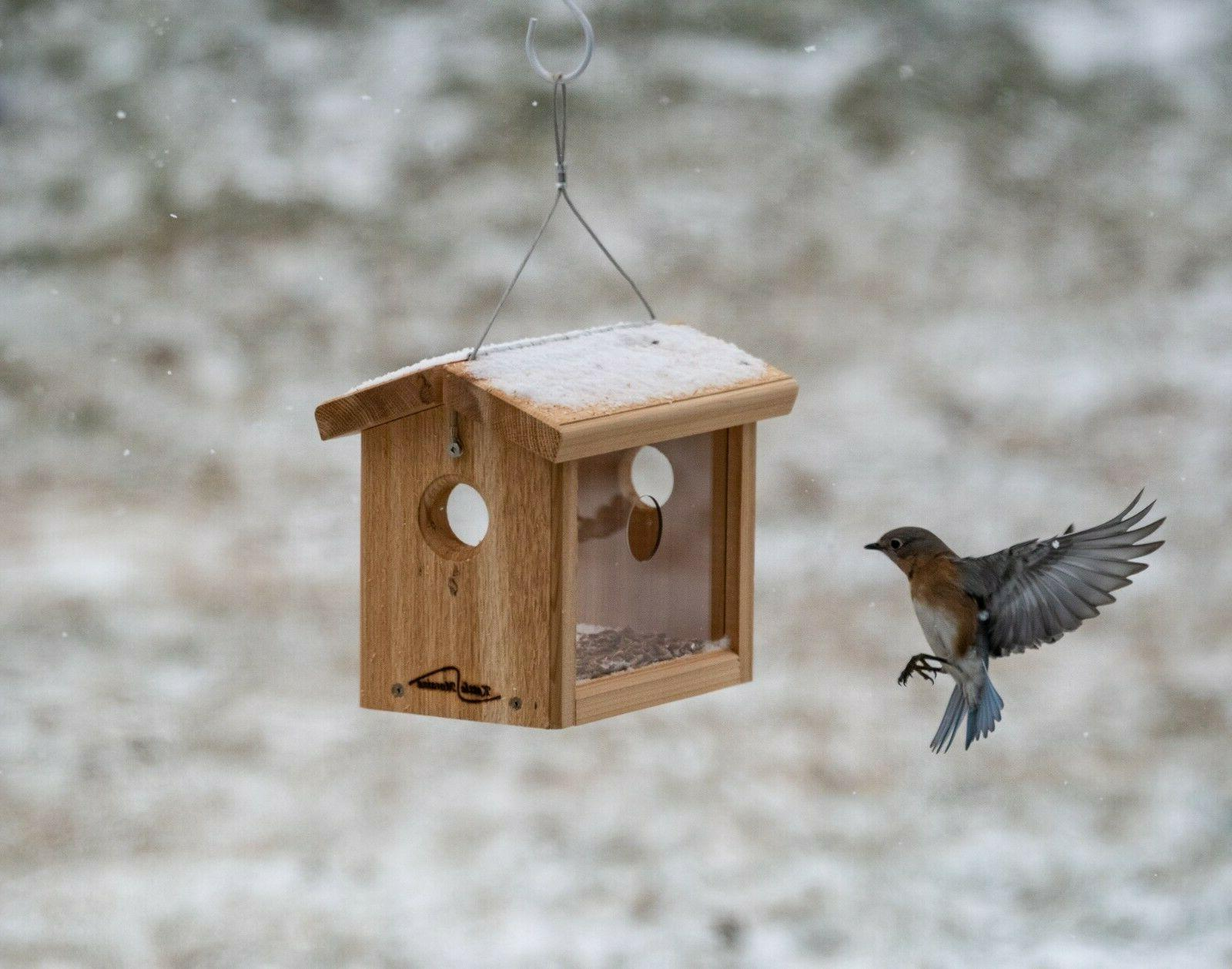 Kettle Moraine Hanging Cedar Bluebird Mealworm Feeder #8515