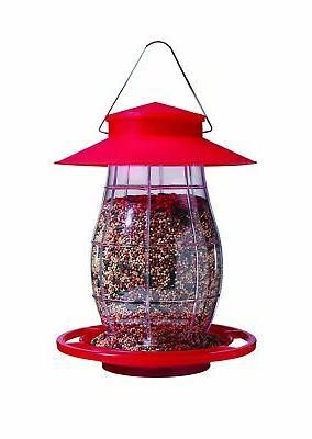 lantern bird model 6226