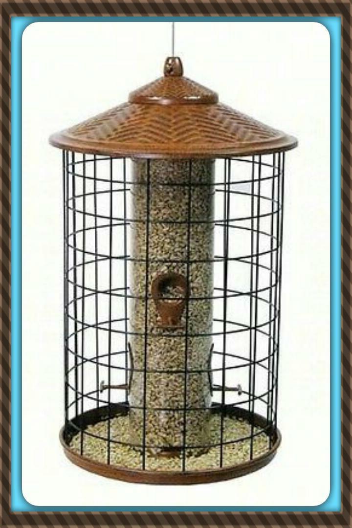 New HIATT SQUIRREL Birds ROOF