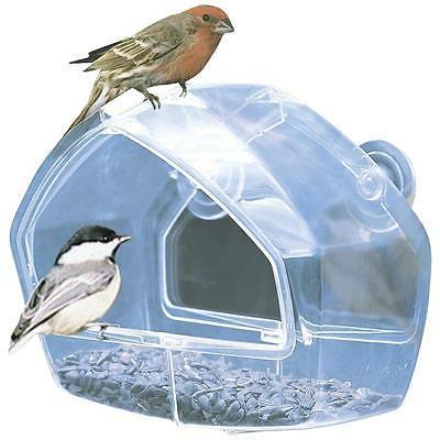 perky pet window bird feeder