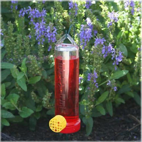 Plastic Hummingbird Feeder With Hanging Guard Capacity NEW