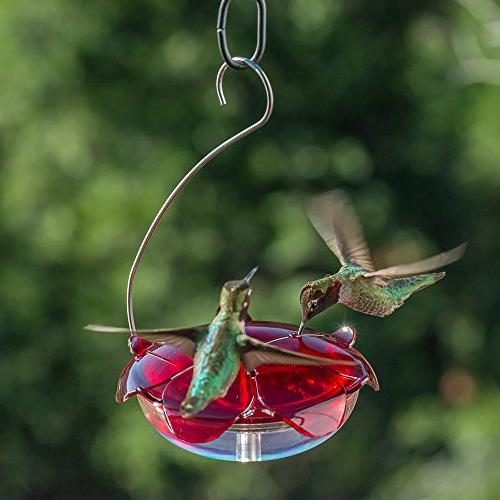 Droll Hummingbird with Red 5 Ounce Nectar Capacity