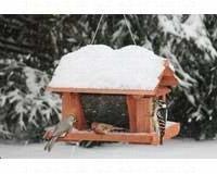 """Songbird Essentials SE513 14"""" Seed and Suet Feeder"""