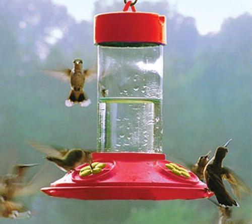 Songbird Essentials SE6018 Dr. JBs oz Feeder Feeder w Flowers