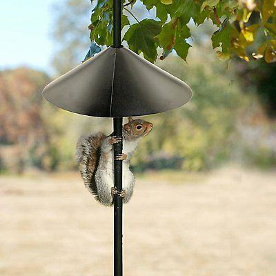 squirrel baffle